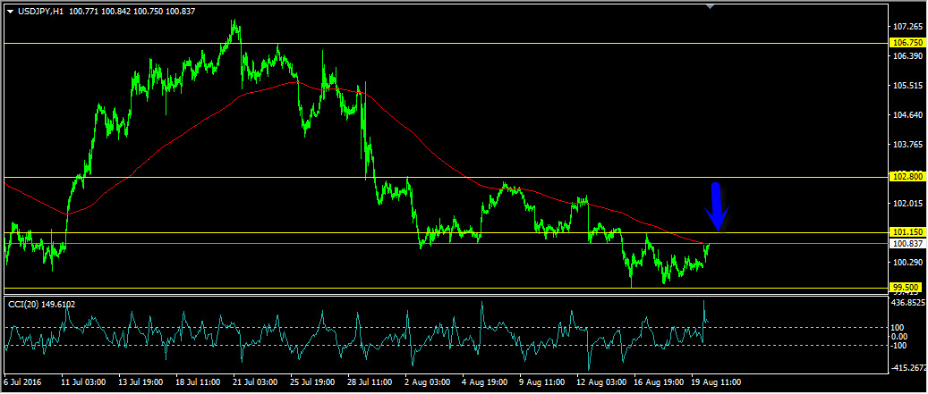 fx Forex Daily Forecast